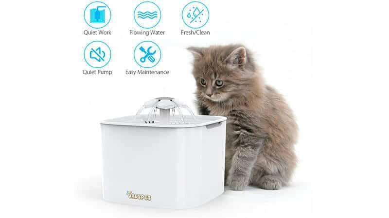 Bebedero para Gatos que Tiran Agua